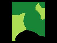 Logo d'un cheval en vert sur fond blanc